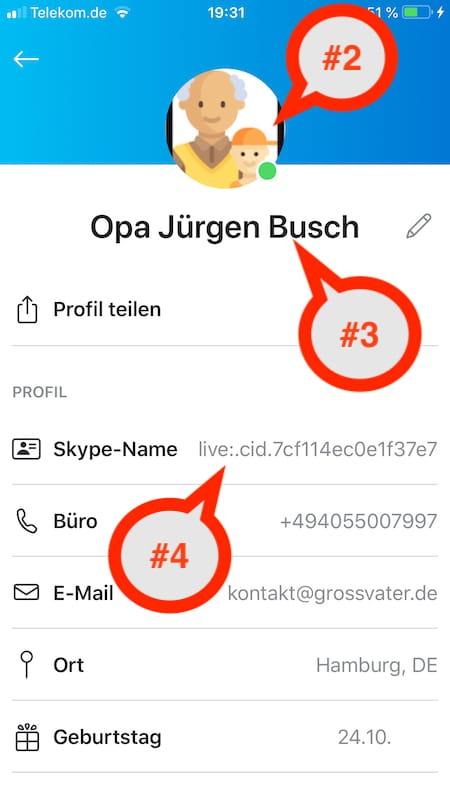 Was sind meine Skype Profildaten?