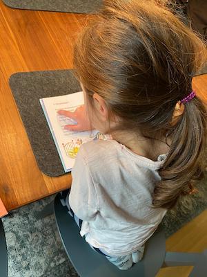 Enkeltochter liest ein gutes Erstlesebuch