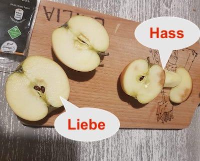 Versuch Apfel-Mobbing