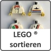 LEGO sortieren und reinigen